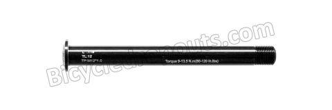 BDTA-101,119mm*ø12*M12x1.0*TL12,Thru axle,Steekas,Axe traversant